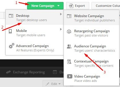 Create new audience campaign